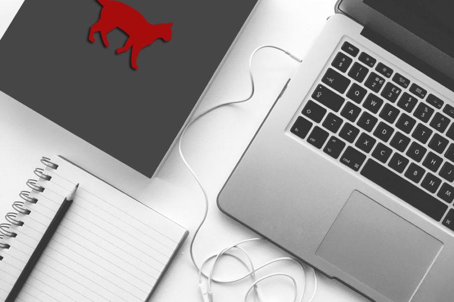 La importancia de tener una Web / Tienda Online